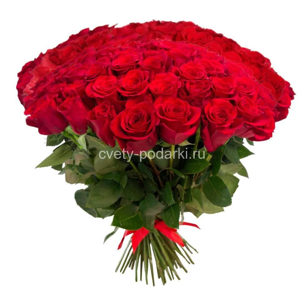 Цветы огромные букеты роз